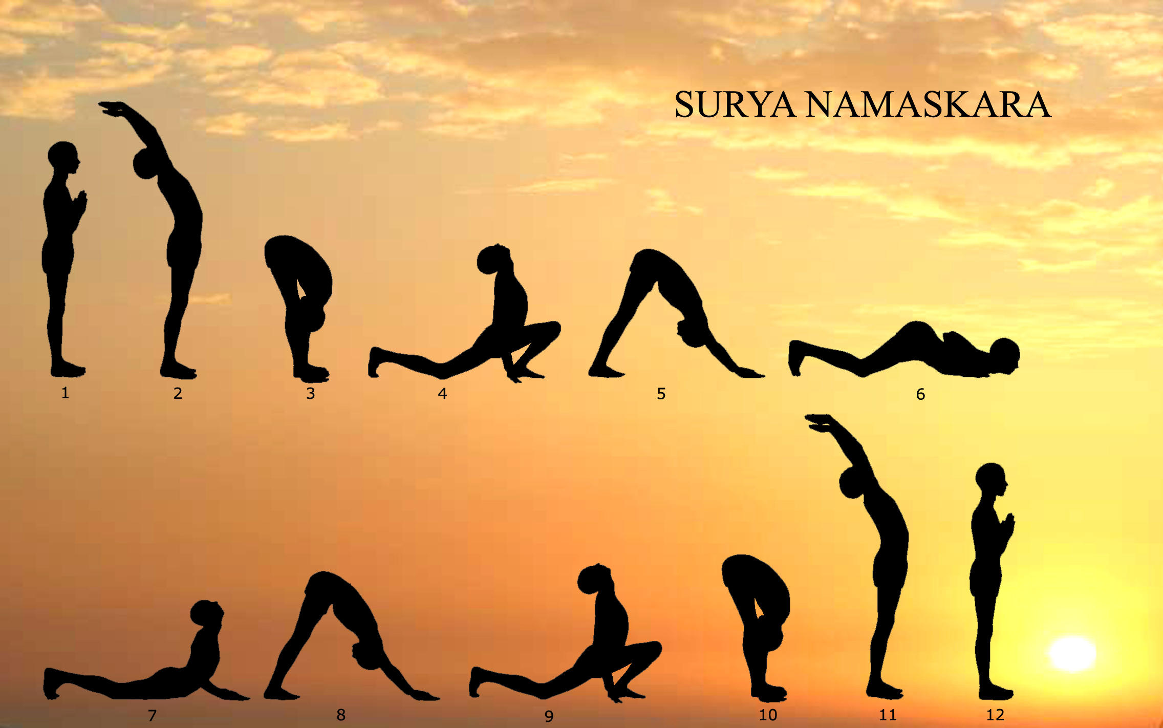 Physiotherapy, Surya Namaskar (Sun Yoga) & the Gayatri ...